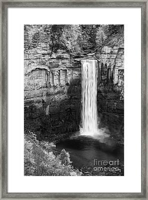 Taughannock Monochrome II Framed Print by Michele Steffey