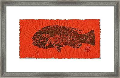 Tautog On Sienna Thai Unyru / Mulberry Paper Framed Print by Jeffrey Canha