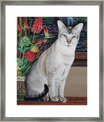Tava Framed Print