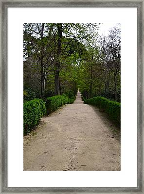 Tavel Down Framed Print