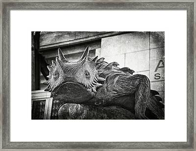 Tcu Horned Frog 2014 Framed Print