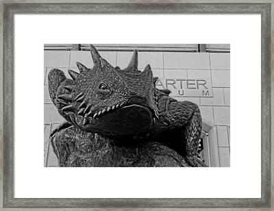 Tcu Horned Frog Black And White Framed Print
