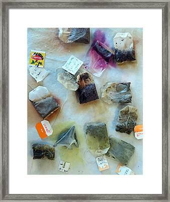 Tea Bags Framed Print by Patricia Januszkiewicz