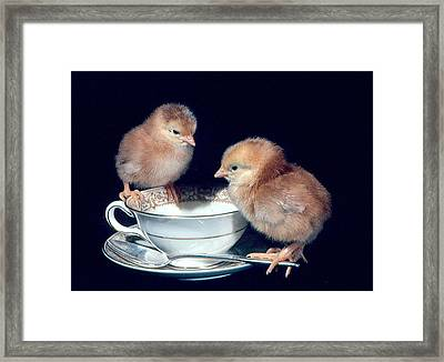Framed Print featuring the photograph Tea For Two by Paul Miller