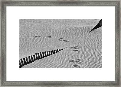 Tea In The Sahara Framed Print