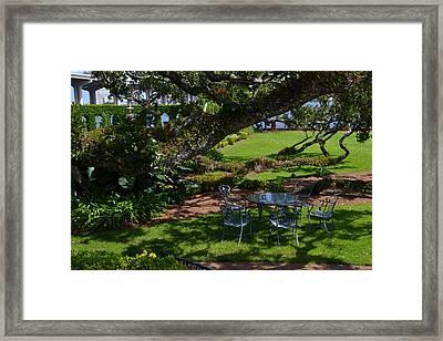Tea Time Framed Print by Victoria Clark