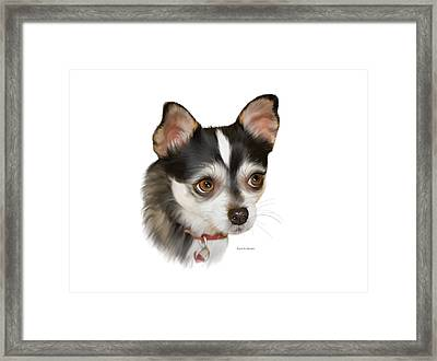 Teacup Chihuahua Framed Print by Angela A Stanton