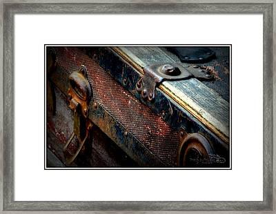 Teak Trunk Framed Print by Guy Hoffman