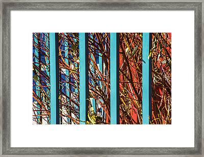 Teal Fence Framed Print