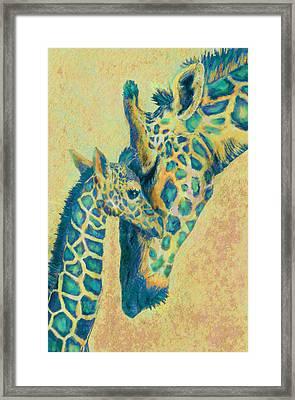 Teal Giraffes Framed Print