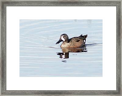 Teal Reflection Framed Print by Norman Johnson