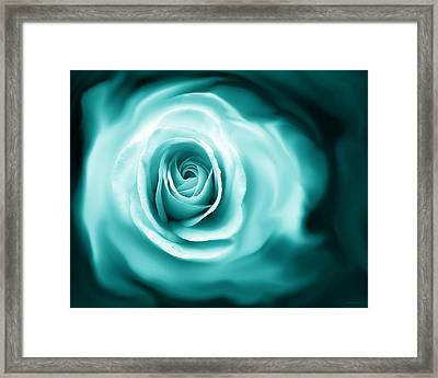Teal Rose Flower Abstract Framed Print by Jennie Marie Schell