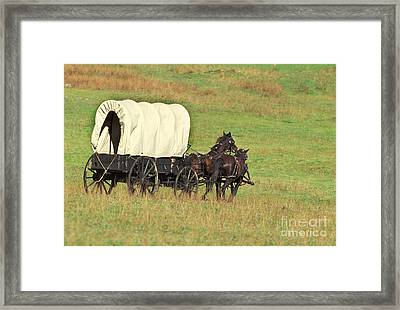 Team Of Horses Pulling A Covered Wagon Framed Print