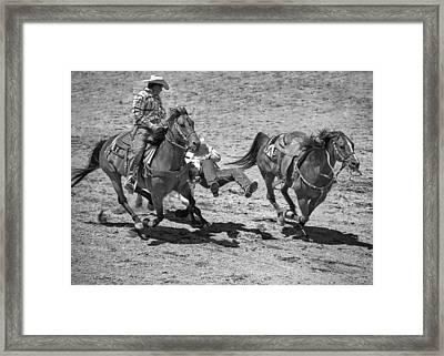 Team Roping Framed Print by Dianne Arrigoni