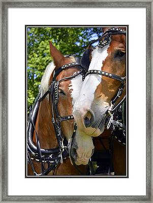Teammates Framed Print by Kathy Barney
