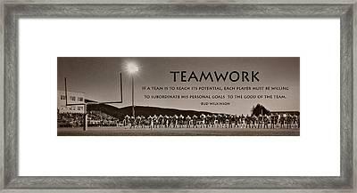 Teamwork Framed Print by Lori Deiter