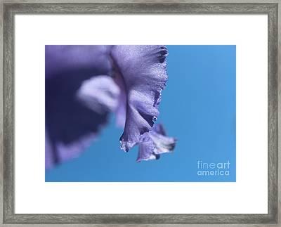 Teardrop Framed Print