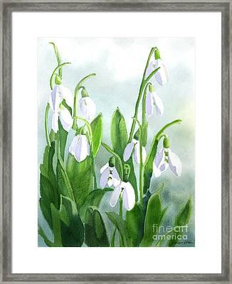 Teardrops In The Snow Framed Print by Joan A Hamilton