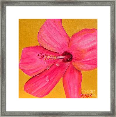 Framed Print featuring the painting Teardrops - Pink Hibiscus Flower by Shelia Kempf