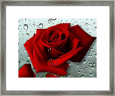 Tears From My Heart Framed Print
