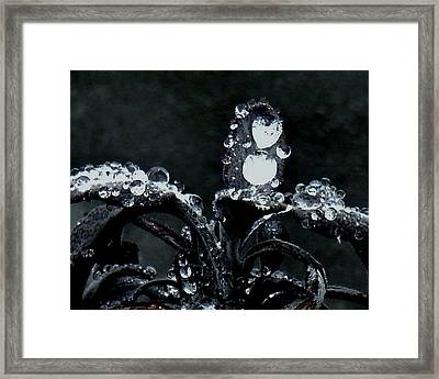 Tears Framed Print by Sharon Costa