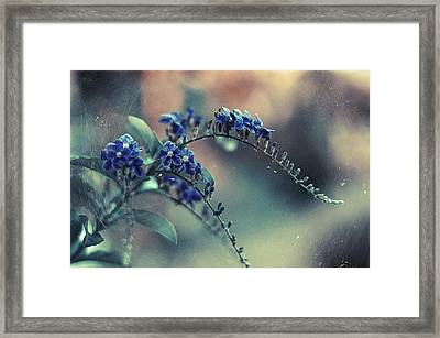Technicolor Flowers Framed Print