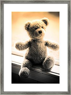 Framed Print featuring the photograph Teddy B by Aaron Berg