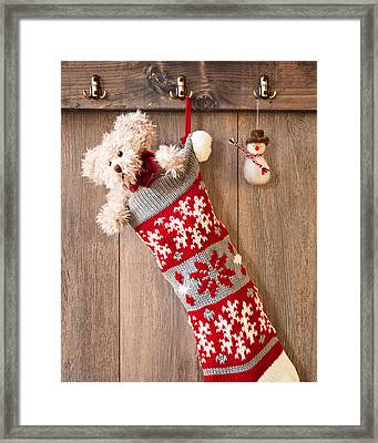 Teddy Bear And Snowman Framed Print