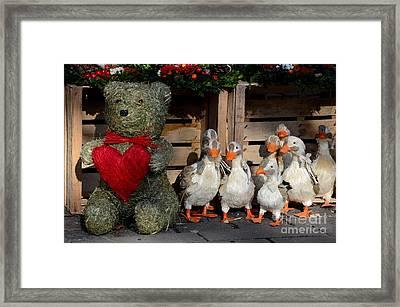 Teddy Bear With Flock Of Stuffed Ducks Framed Print by Imran Ahmed