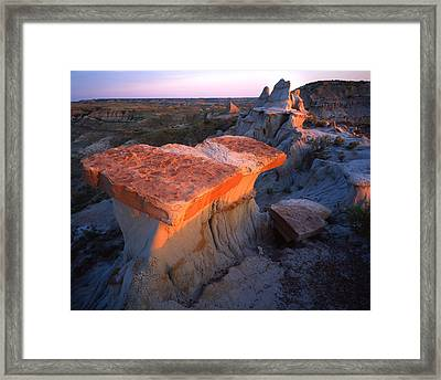 Teddy's Table Framed Print
