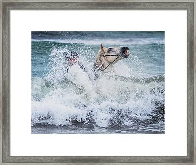 Teenager Horseback Riding In The Sea Framed Print by Panoramic Images