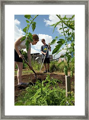 Teenagers Working In A Garden Framed Print