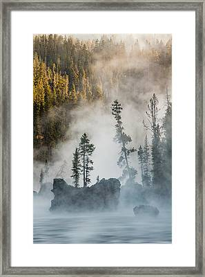 Tees And Boulders In Yellowstone River Framed Print