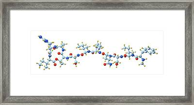 Teixobactin Antibiotic Molecule Framed Print by Dr Mark J. Winter