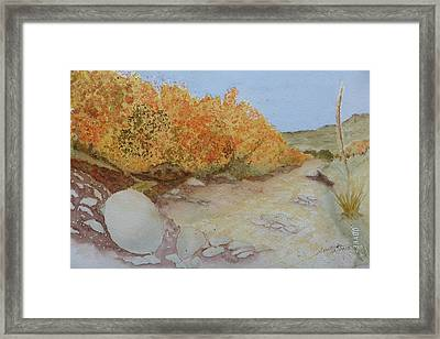 Tejas Creek Experiment - 7 Framed Print
