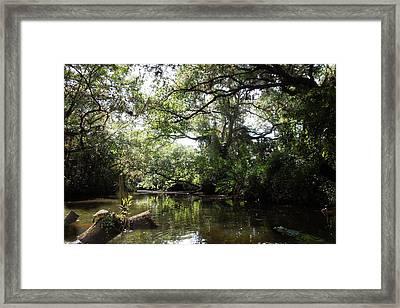 Telegraph Creek Alva Florida Framed Print by Joseph G Holland