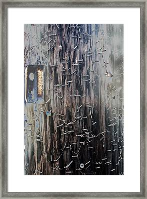 Telephone Pole With Scars From The Past Framed Print