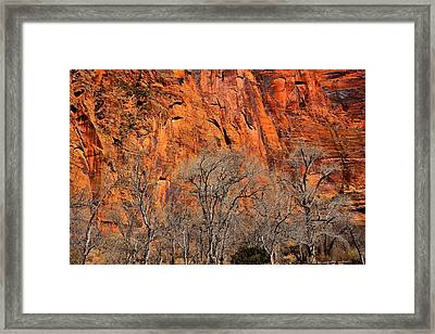 Temple Of Sinawava Framed Print