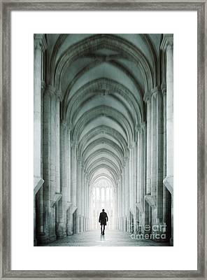 Temple Walker Framed Print by Carlos Caetano