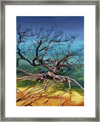 Ten Thousand Islands Framed Print by Urszula Dudek