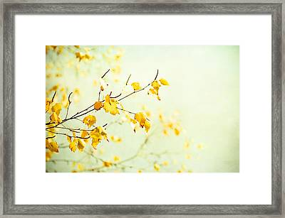 Tender Framed Print by Carolyn Cochrane