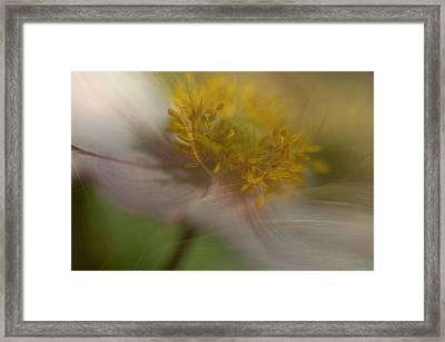 Tender Moment Framed Print by Simone Ochrym
