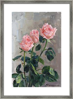Tender Roses Framed Print by Victoria Kharchenko