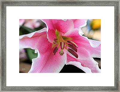 Framed Print featuring the photograph Tender Stargaze by Geri Glavis