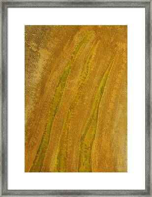 Tender Young Blades Original Painting Framed Print by Sol Luckman