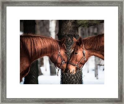 Tenderness Framed Print