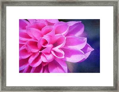 Tendre Framed Print by Angela Bruno