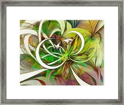 Tendrils 15 Framed Print by Amanda Moore