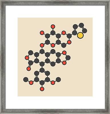 Teniposide Cancer Drug Molecule Framed Print by Molekuul