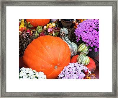 Tennessee, Gatlinburg, Halloween Framed Print by Jamie and Judy Wild